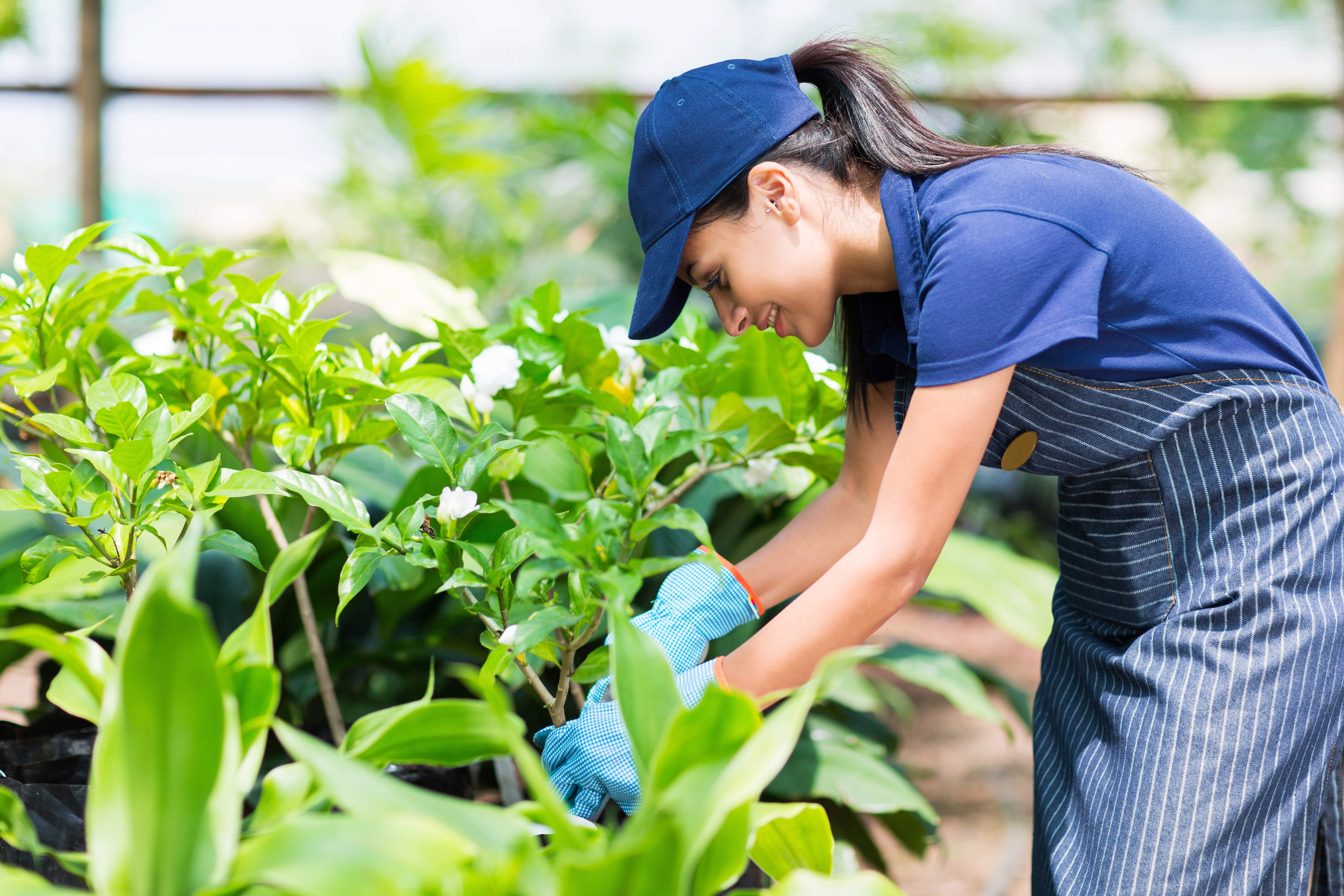 Mujer trabajando en el jardín