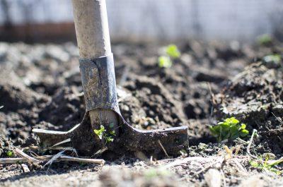 Cómo preparar el jardín para primavera