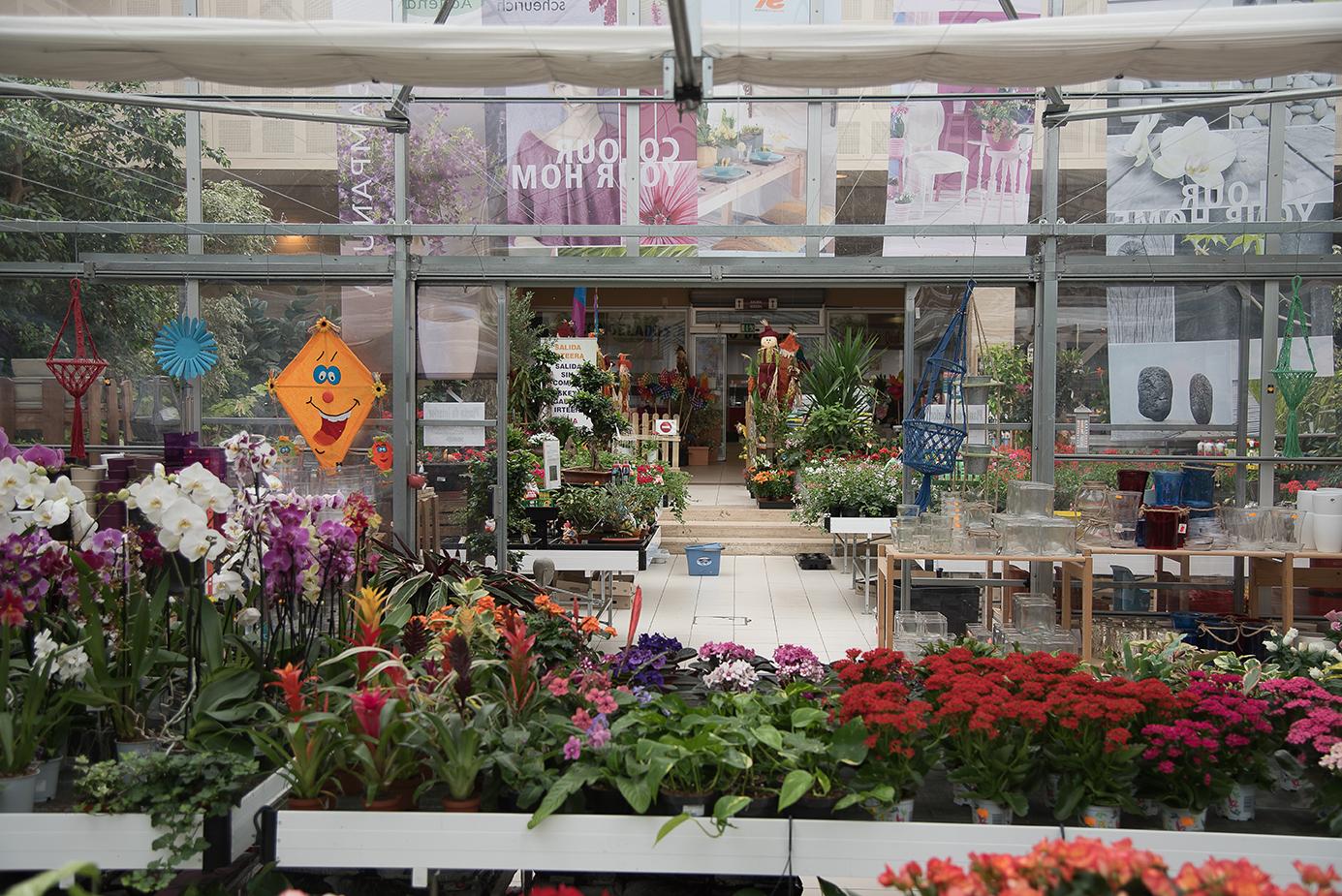 Centro de jardiner a gorbeia for Centro de jardineria