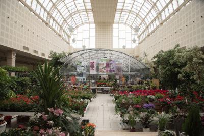 Cursos de Jardinería en Vitoria Gasteiz