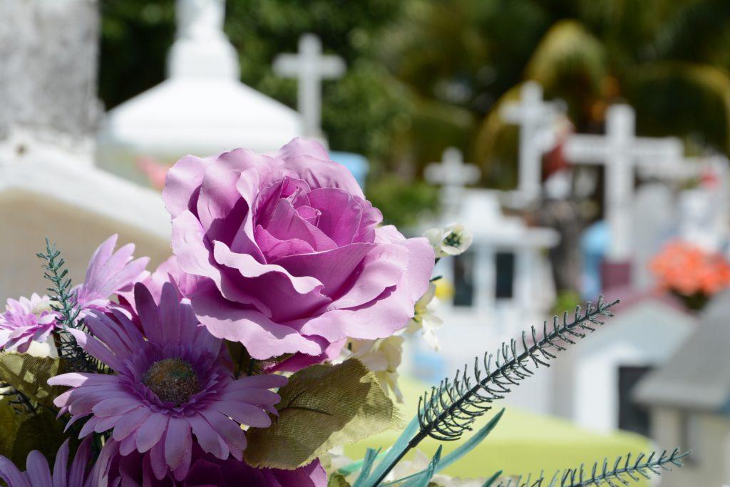 Flores en un cementerio - ¿Por qué llevamos flores a los cementerios en Vitoria Gasteiz?