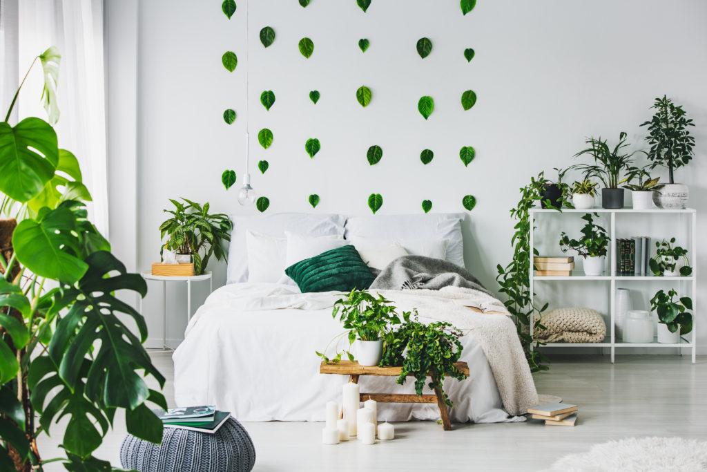 Plantas de interior: El estilo Urban Jungle
