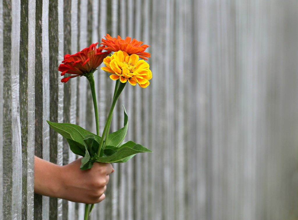 La tradición de regalar flores en San Valentín