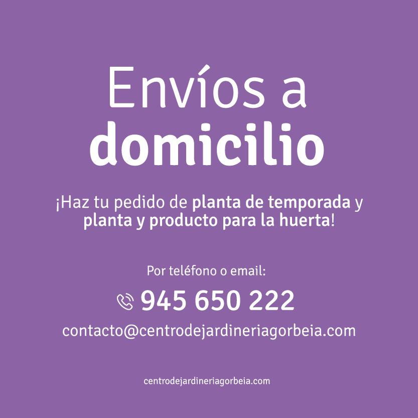 Envíos de plantas a domicilio en Vitoria Gasteiz por el estado de alarma por el coronavirus