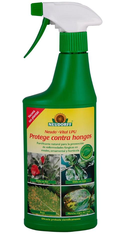 Control de plagas hongos Neudorff